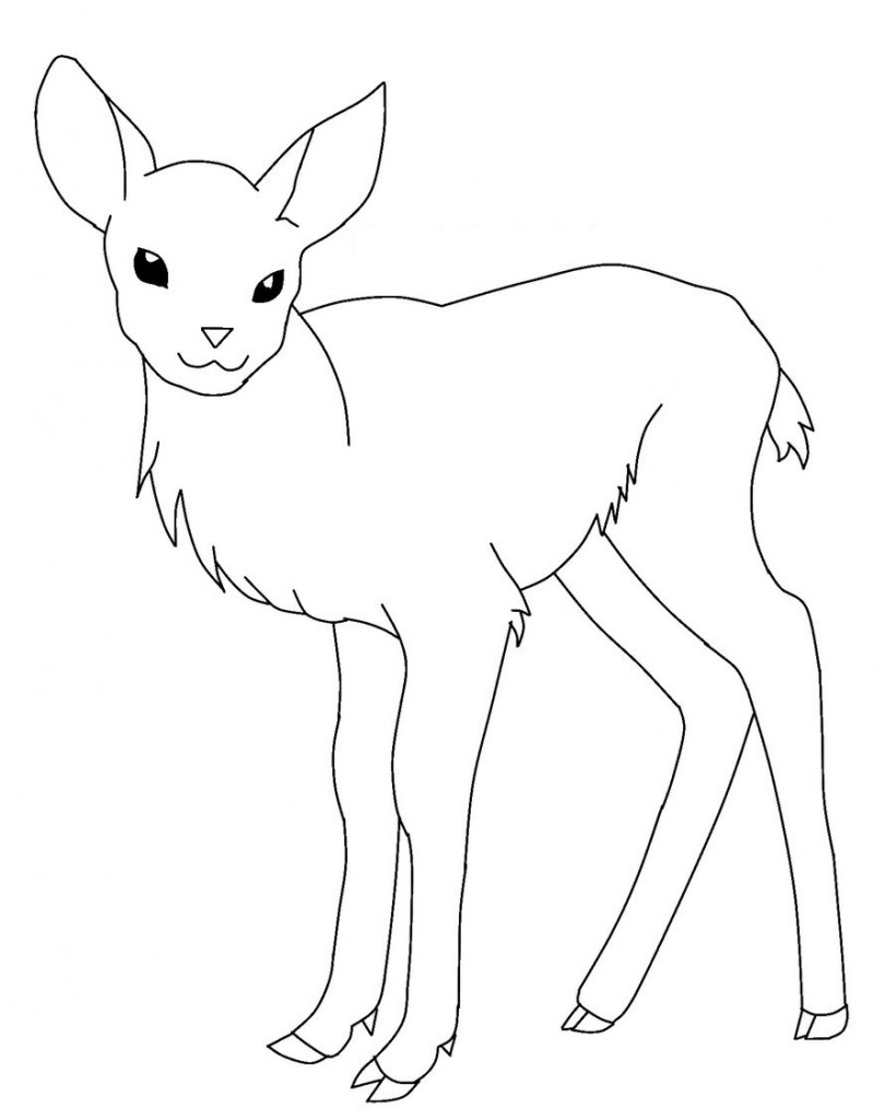 20 Baby Deer Coloring Pages Printable Ideas And Designsrhartrefugeorg: Deer Coloring Pages Printable At Baymontmadison.com