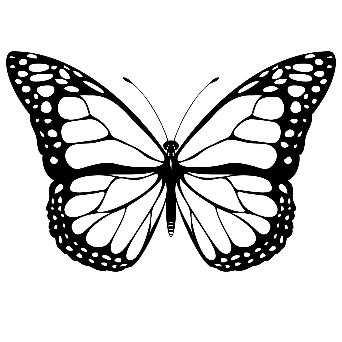 Free Printable Coloring Pages Butterfly