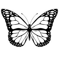 Butterfly Coloring Pages Widescreen Printable Butterfly For Preschool Iphone Hd Kids