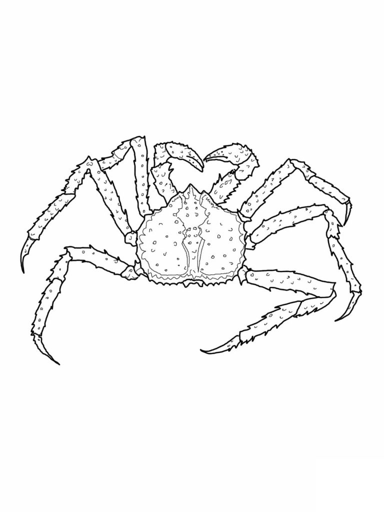 Free Printable Crab Coloring Pages For Kids