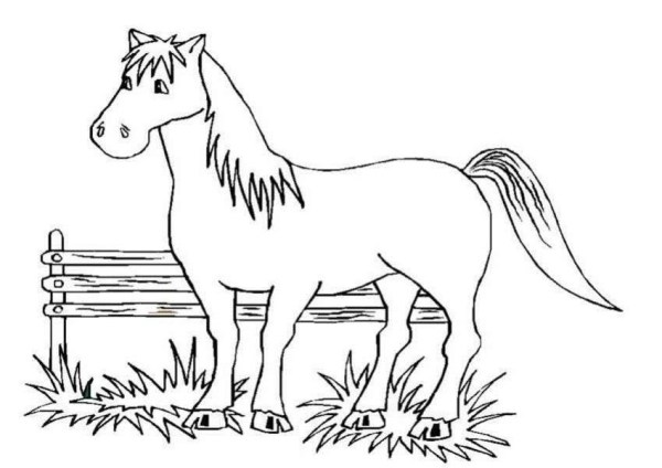 horse coloring pages free # 6