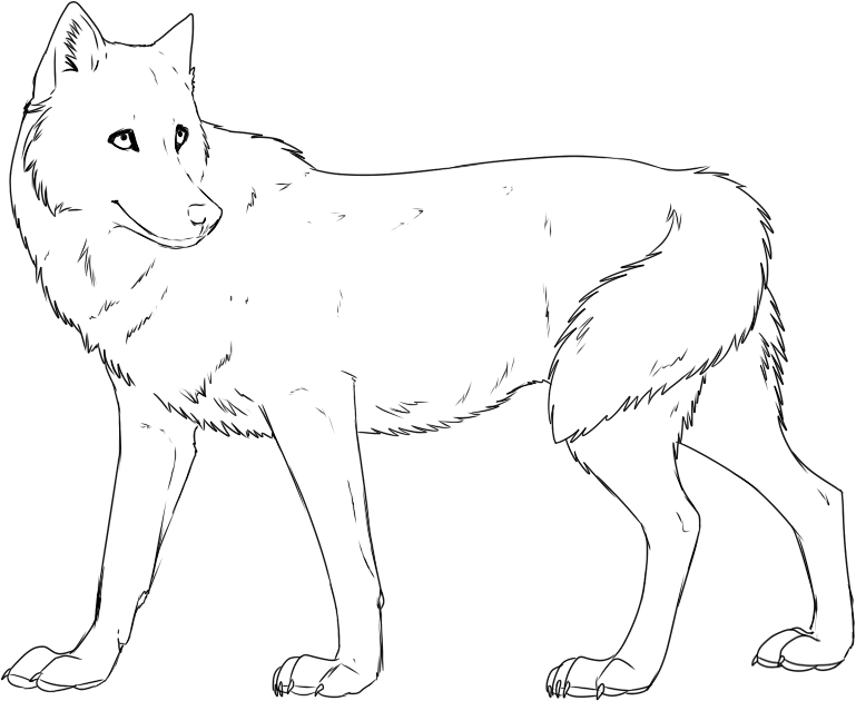Female Winged Wolf Coloring Pages Coloring Pages