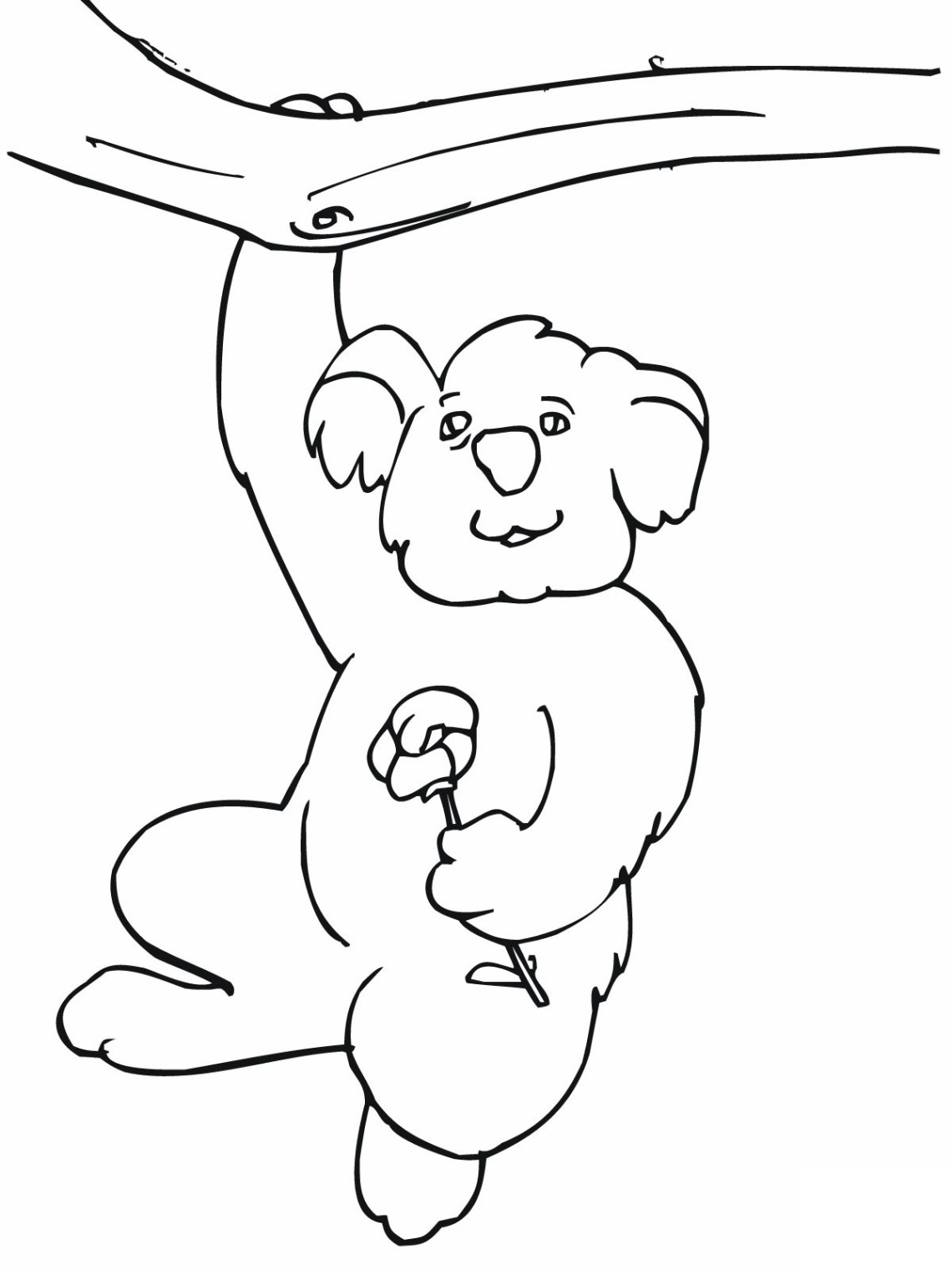 Free Printable Koala Coloring Pages For Kids | printable coloring pages funny