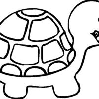 Turtle Coloring Pages For Kids Wallpaper Hd Cute Turtle Animals Iphone Pics Printable