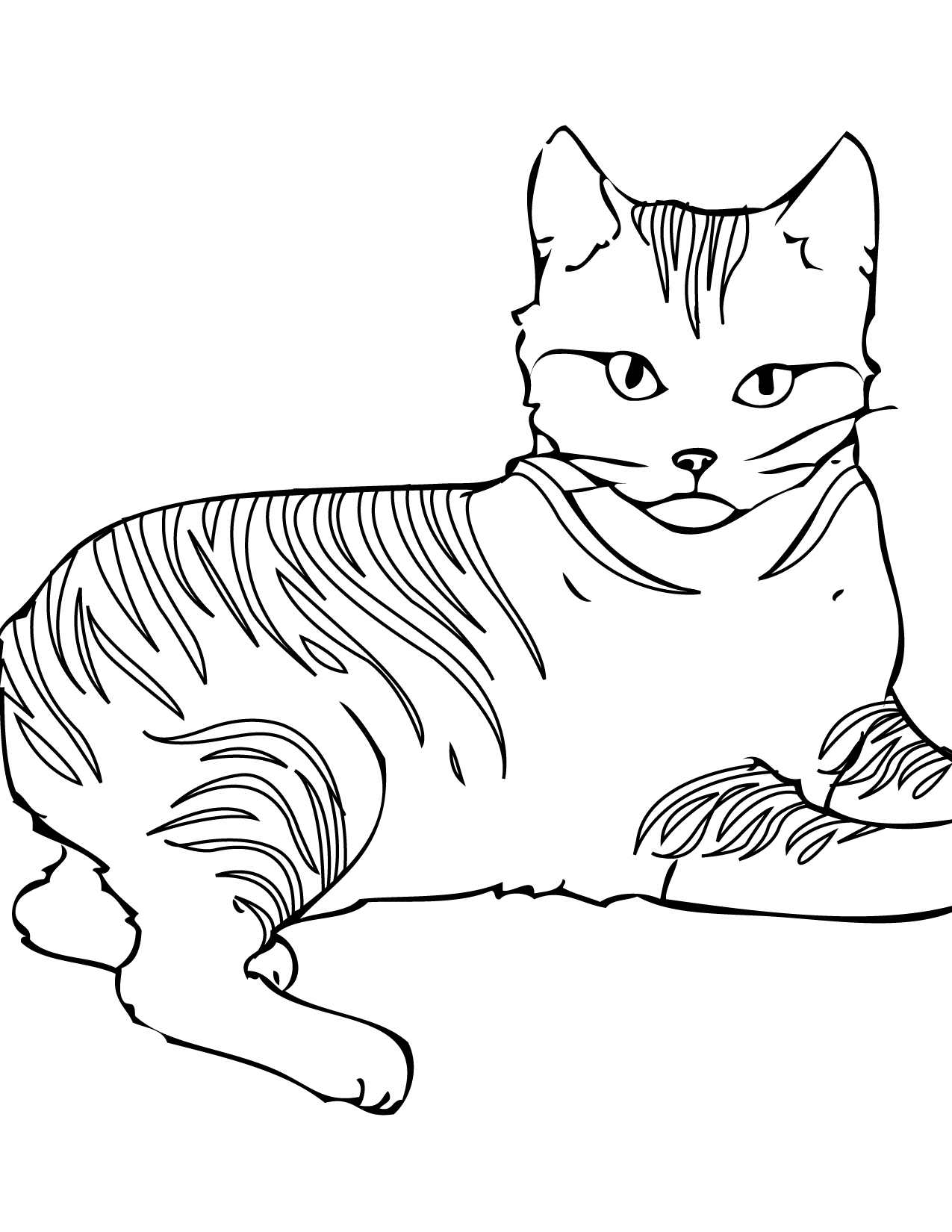 free printable cat coloring