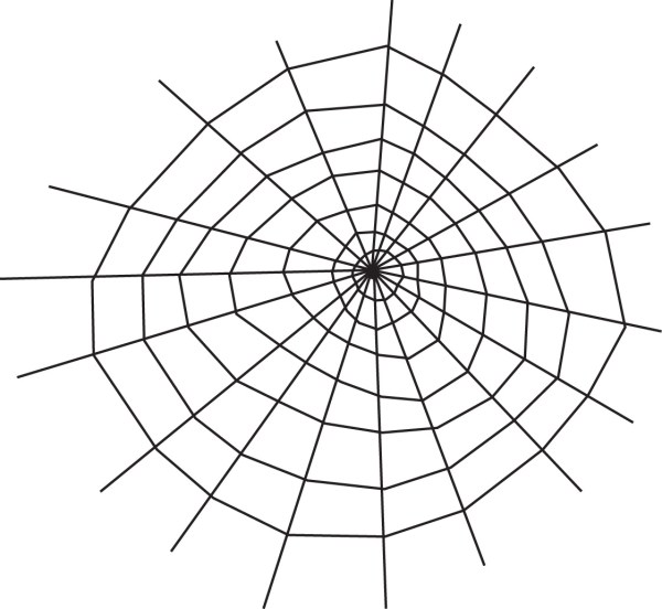 spider web coloring page # 8