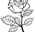 Printable roses coloring pages backgrounds roses of for mobile hd pics kids