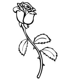 Rose Flower Coloring Pages