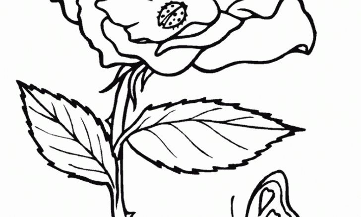 Coloring pages desktop of printable superheroes hd pics rose for kids