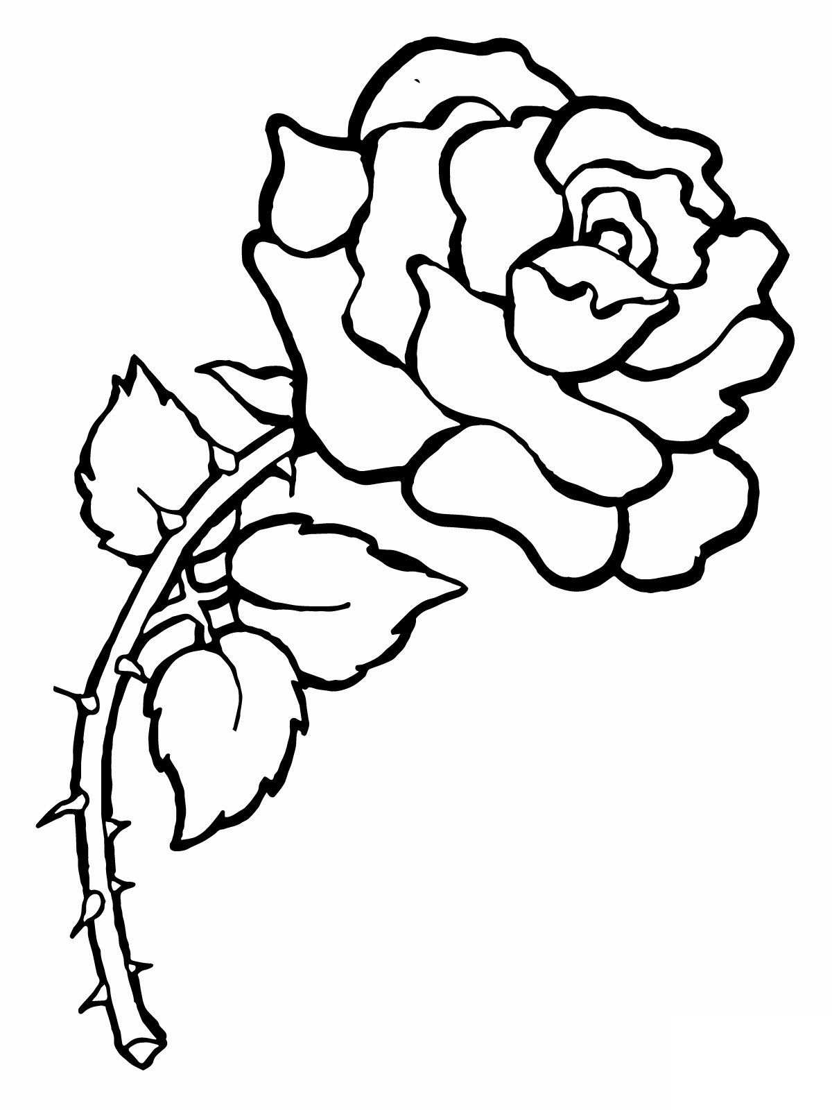black rose coloring pages