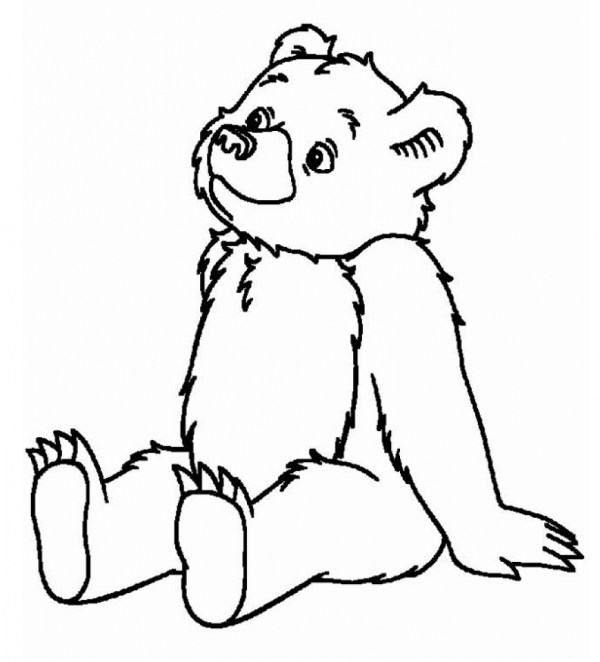 coloring pages of bears # 80