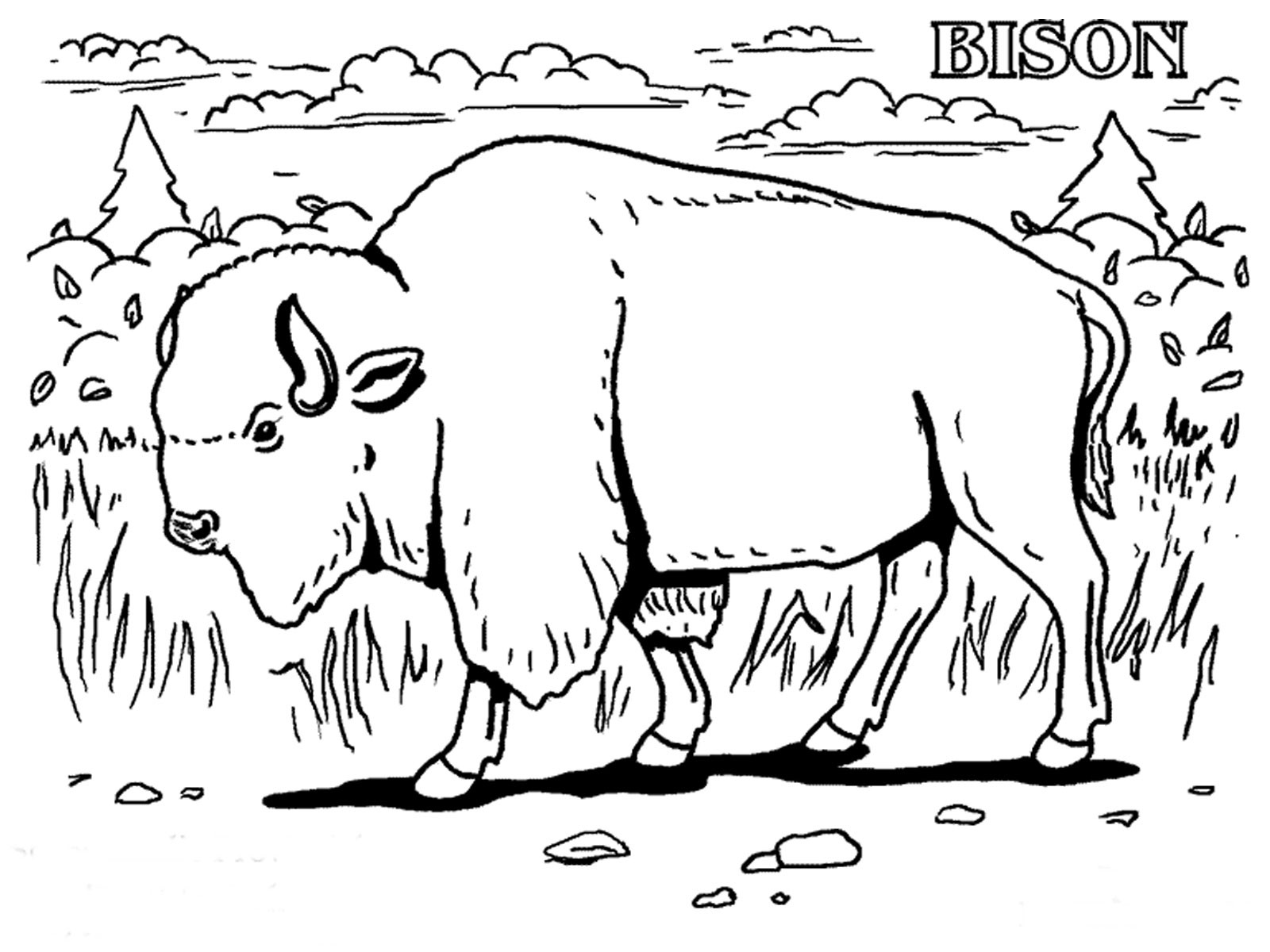 Extinct Animals Coloring Pages