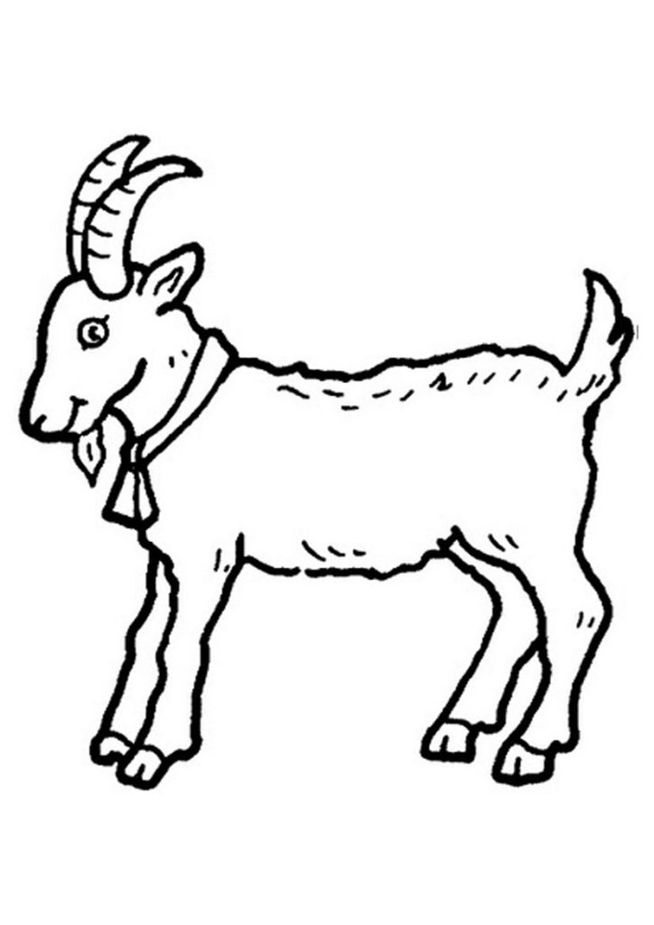 Free Printable Goat Coloring Pages For Kids
