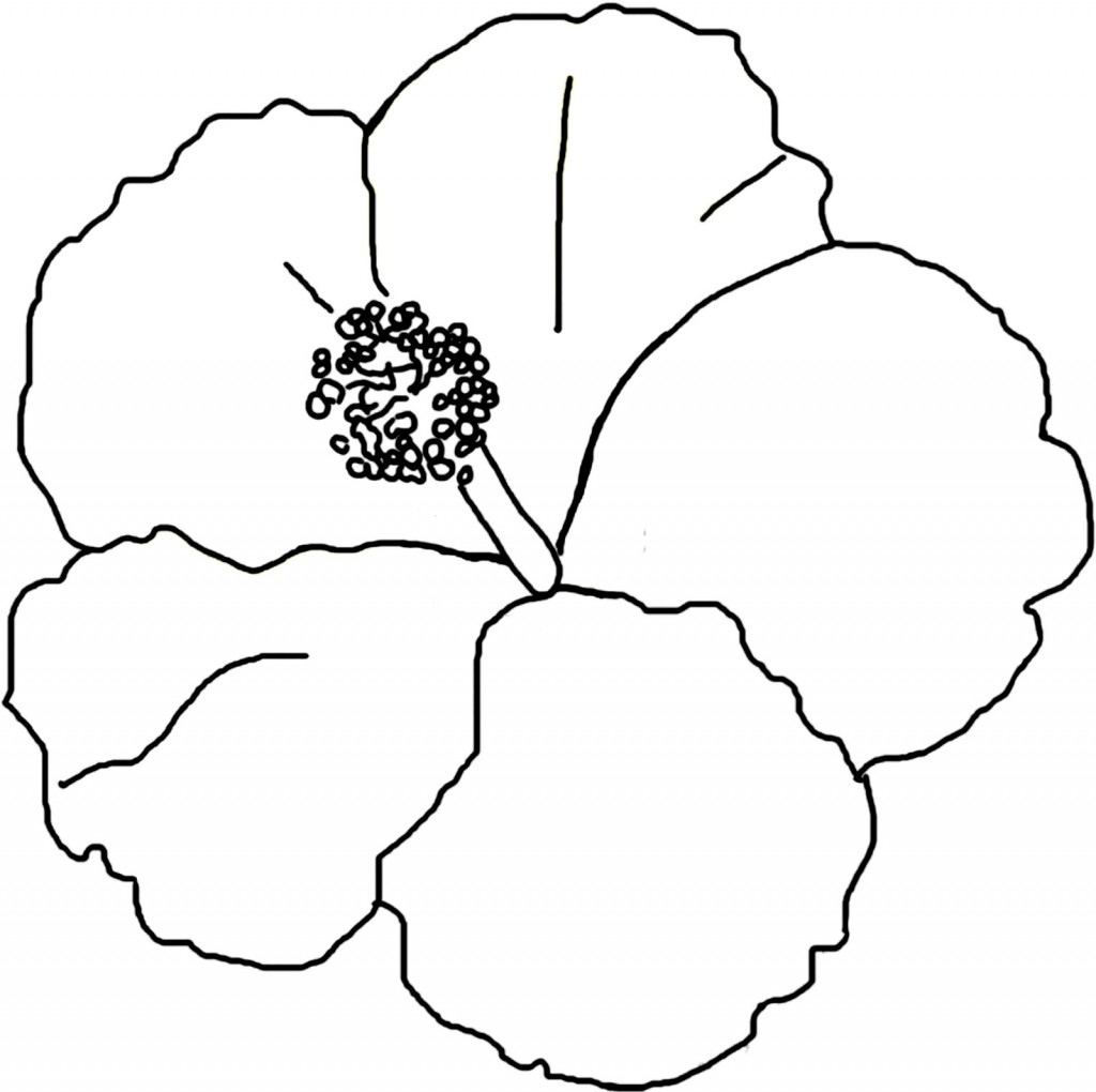 Flor Maga Coloring Pictures