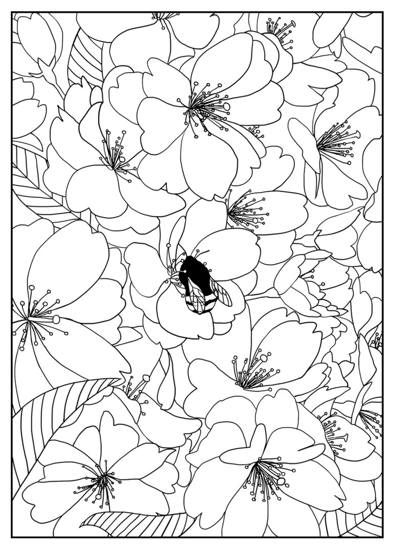 Free Printable Flower Coloring Pages For Kids - Best ... | free printable flower coloring pages
