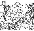 Printable flower coloring pages for kids best wallpaper of mobile phones hd