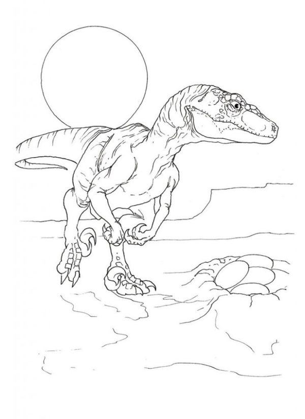 20 Blue Velociraptor Jurassic Park Dinosaur Coloring Pages Ideas