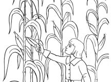 Corn Harvest Coloring Pages