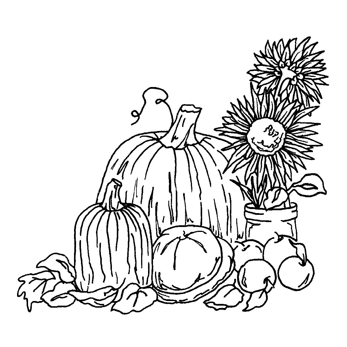 Harvest Coloring Pages