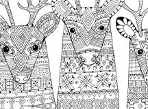 Zendeer - Christmas Coloring Pages for Adults