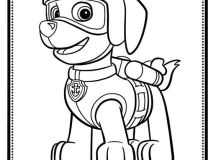 Zuma - Paw Patrol Coloring Pages