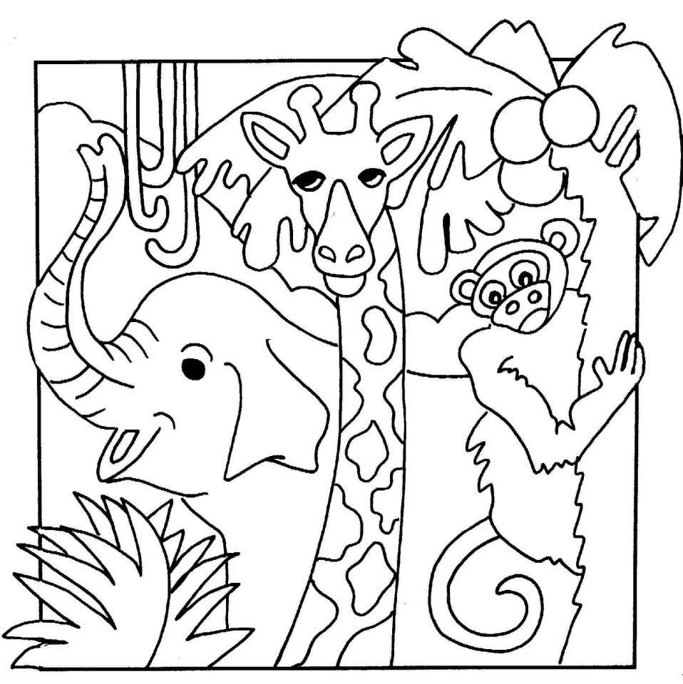 Jungle Coloring Pages - Best Coloring Pages For Kids   printable coloring pages jungle animals