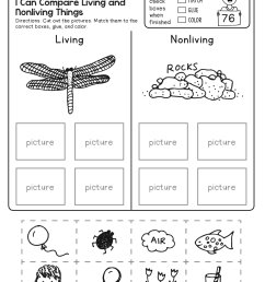 4th Grade Science Worksheets - Best Coloring Pages For Kids [ 1172 x 899 Pixel ]