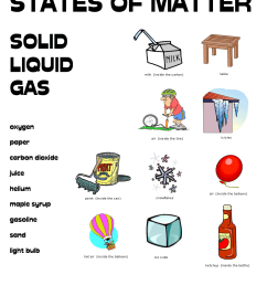 4th Grade Science Worksheets - Best Coloring Pages For Kids [ 1650 x 1275 Pixel ]
