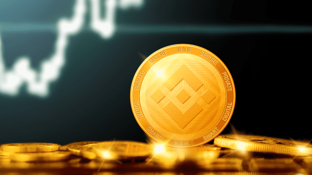 The capitalisation of Binance Coin is now $100 billion