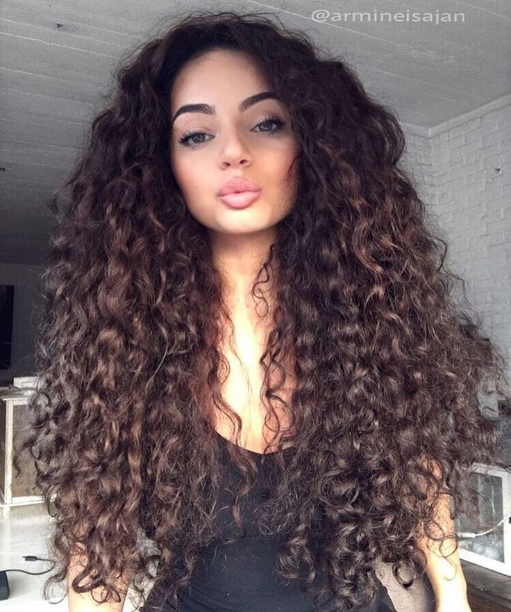 Natural Curly Hair Hairstyles Best Curly Hairstyles