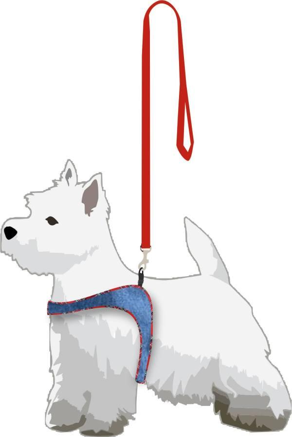 dog fashion illustartion