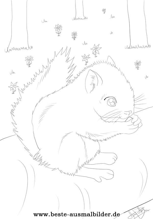 Eichhörnchen Ausmalbild- kostenlose Ausmalbilder und