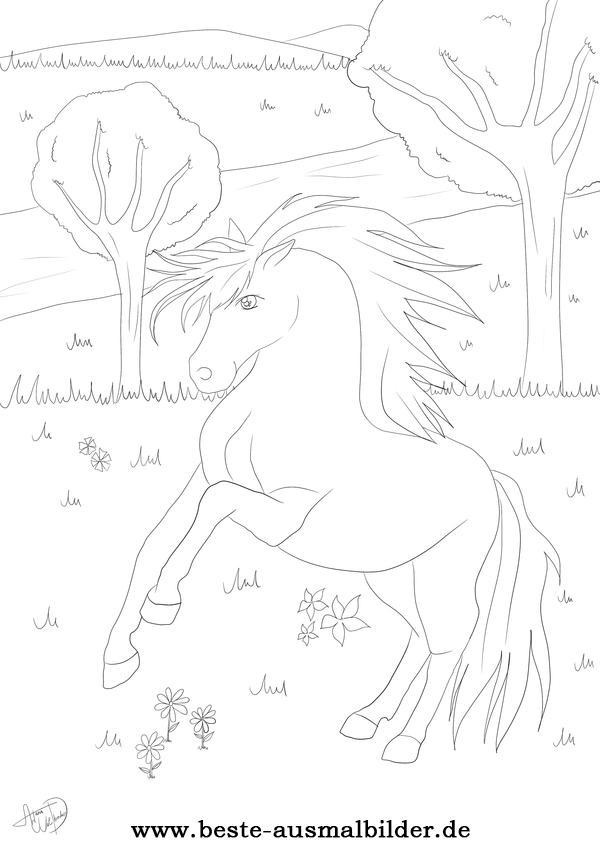 Malvorlage Pferd Malen Kinder - Tier Malen