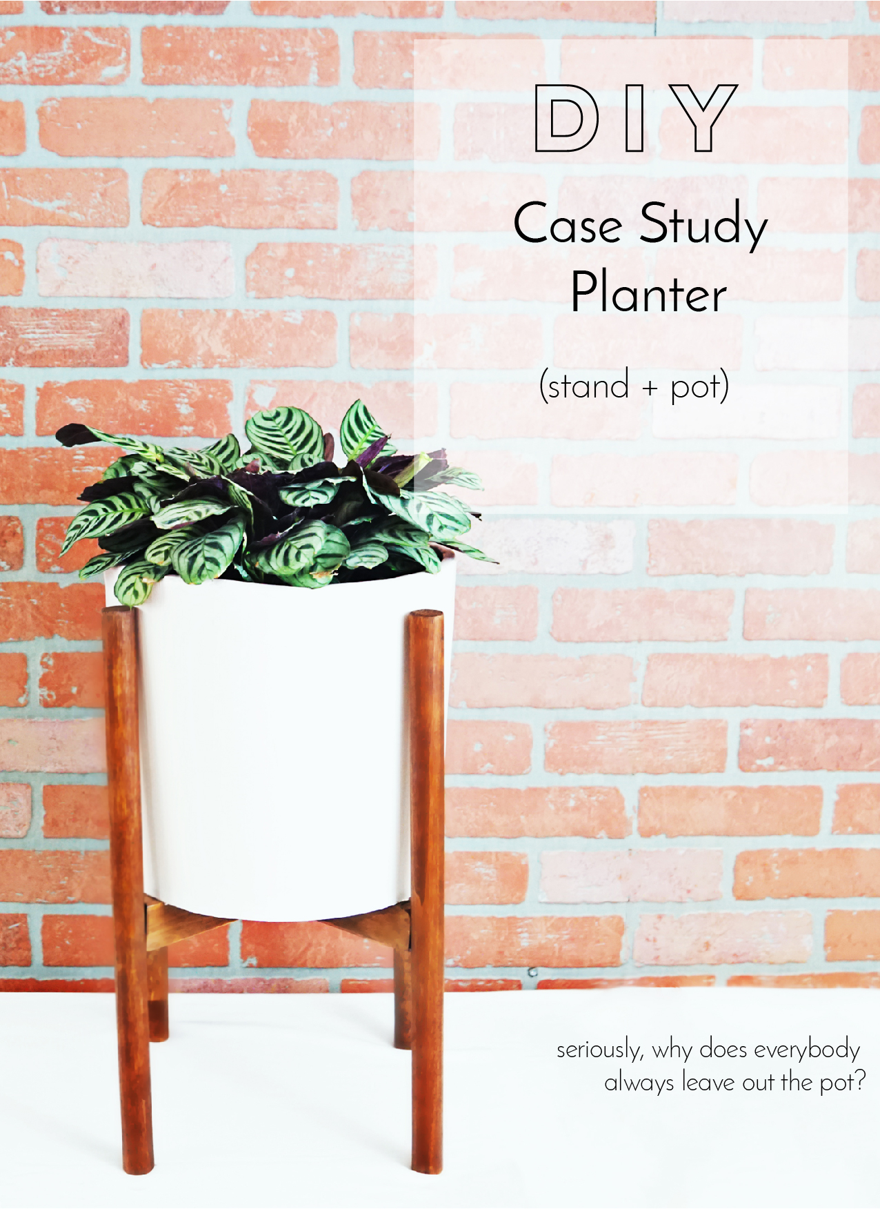 Can You Believe That Thereu0027s No Wikipedia Article For Modernicau0027s Case  Study Planter? (Of Course You Can, But I Was Legit Surprised Until I Came  To My ...