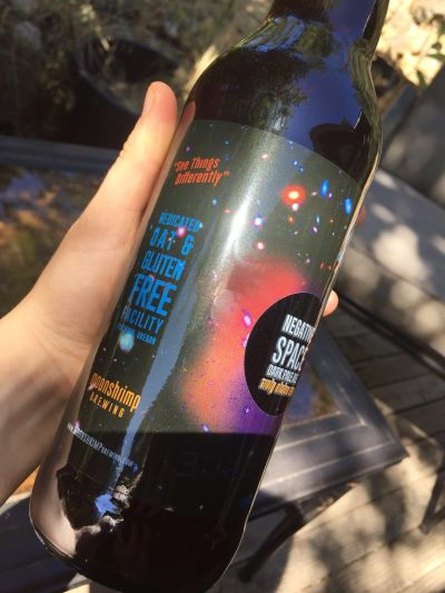 moonshrimp brewing negative space dark pale ale review best gluten free beers gluten free brewery