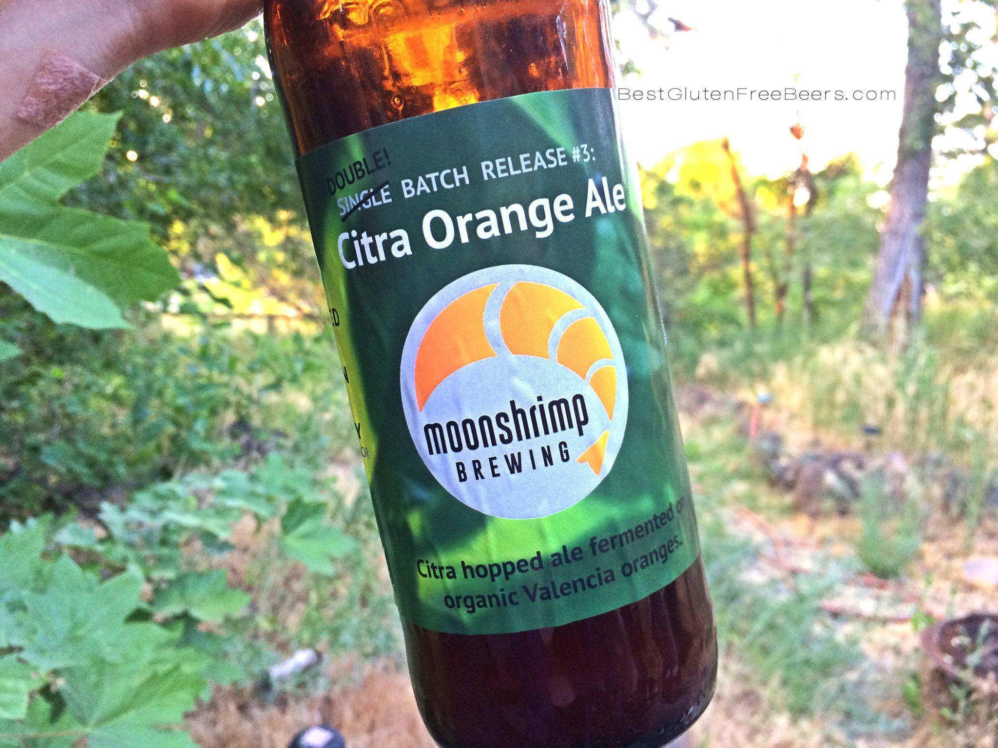 Moonshrimp Brewing Citra Orange Ale best gluten free beers review