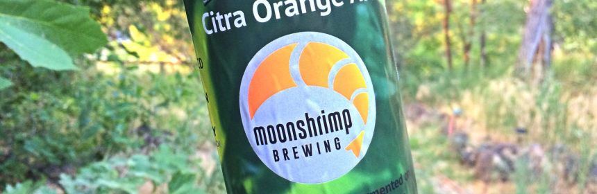 Moonshrimp Brewing Citra Orange Ale best gluten free beers review