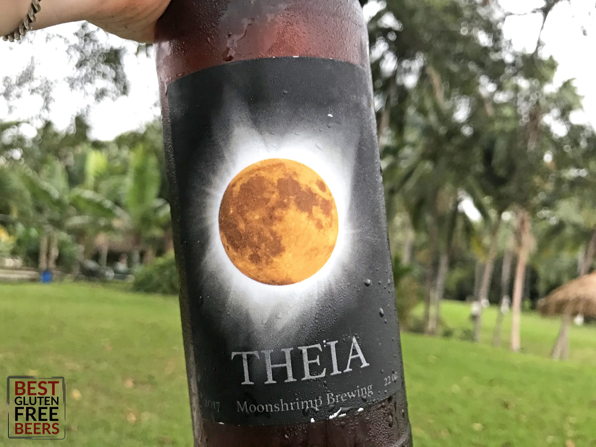 Solar Eclipse Theia Ale Wine Brewed by Moonshrimp Brewing