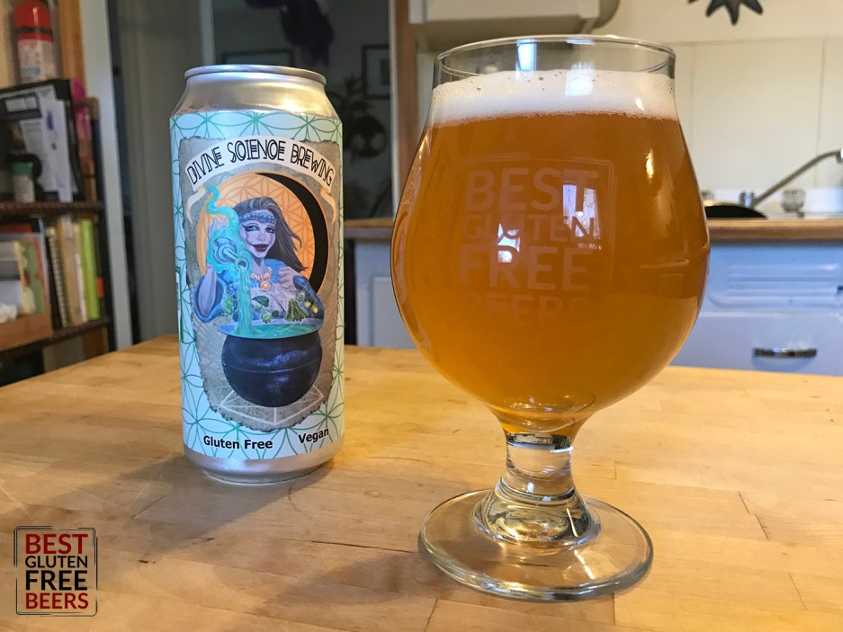 Divine Science Brewing Third Contact IPA 1