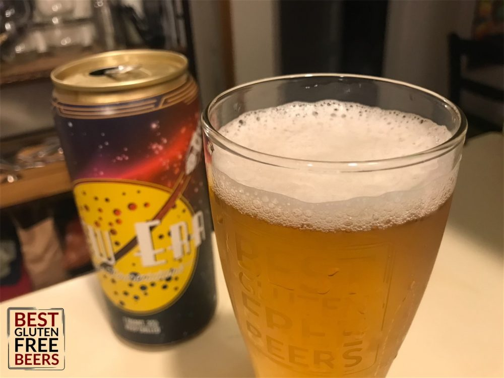 Neff Brewing Houston We Have a Problem Mexican Lager 1