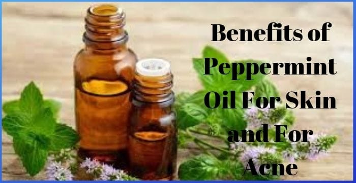 Benefits of Peppermint Oil For Skin and For Acne
