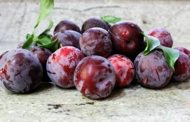 plum fruit benefits