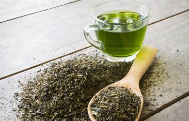 Read About the Amazing Health Benefits of Green Tea