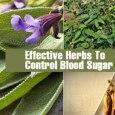Control Blood Sugar Levels