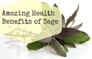 Health Benefits of Sage Herb