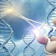 What are Gene Mutations