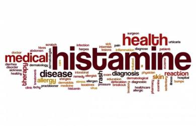 Histamine Functions