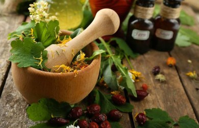 Powerful Medicinal Plants and Herbs