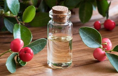 What is Wintergreen Essential Oil