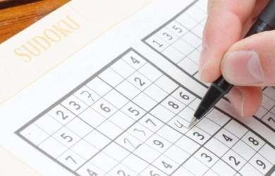 Benefits of Sudoku for the Brain